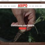 Asipo sito web